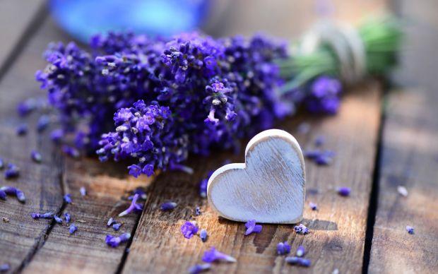 50_2560x1600_lavanda-buket-serdtse-lavender.jpg (41.73 Kb)