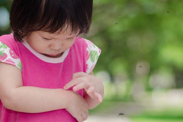 Якщо дитину покусали комарі, що робити щоб зняти свербіж та почервоніння - читайте далі.