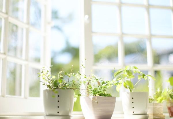 Зволоження повітря необхідне! Справа у тому, що воно стає сухим, а це сприяє розмноженню бактерій, вірусів і пилових кліщів. Пил, пилок рослин та пух