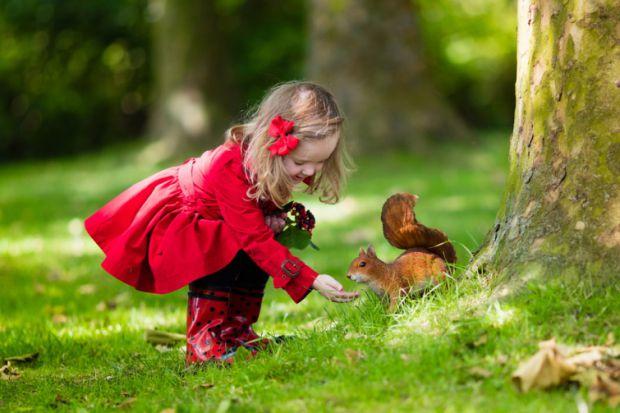 Чому малюкам корисно більше часу проводити за межами дому?