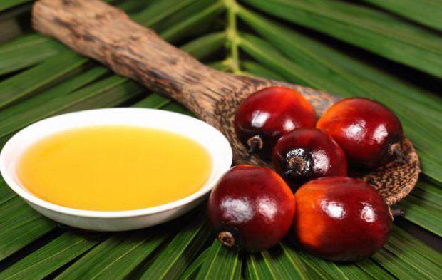 Багато хто вважає, що вживання пальмової олії може завдати шкоди здоров'ю, але це не зовсім так. Давайте розглянемо плюси і мінуси цього продукту.