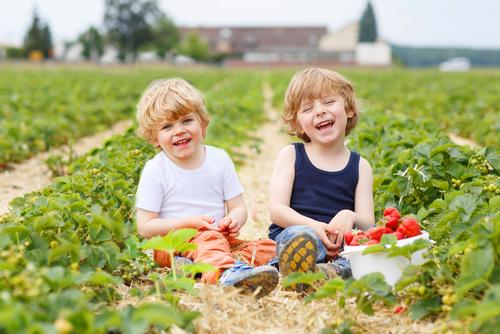 Щоб вбезпечити дитину від харчового отруєння, варто обирати правильні продукти, повідомляє сайт Наша мама.