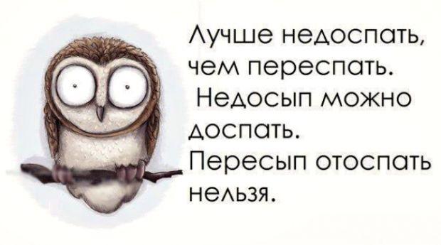 25_10886979_85918nothumb650.jpg (29.96 Kb)