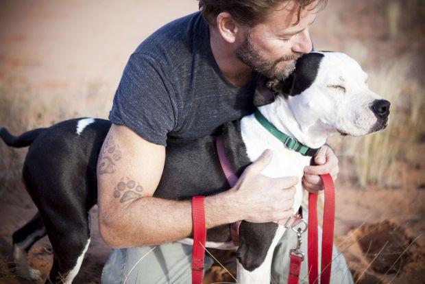 Якщо людина має домашнього улюбленця - собаку, який живе разом з господарем в домі, то це призводить до певних змін на поведінковому, психологічному,
