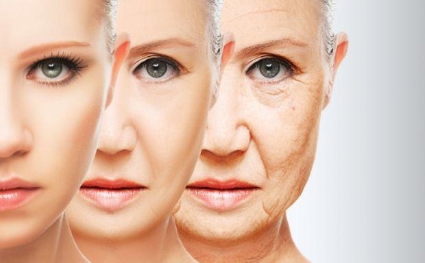 Доволі цікаво, чому наш організм зношується, а тіло старіє. На це є багато причин.
