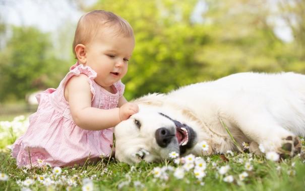 Канадське товариство педіатрів та товариство боротьби з алергією і клінічної імунології переконують, що дітей, схильних до високого ризику розвитку ха