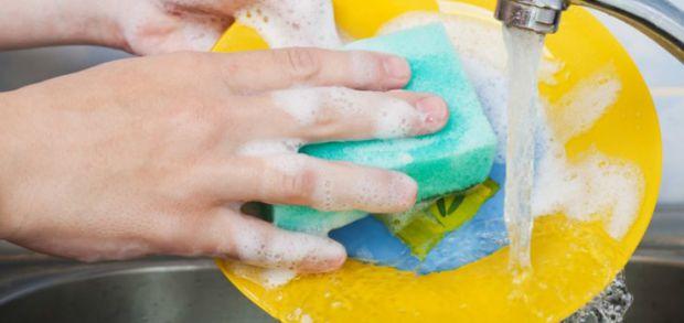 Губка для миття посуду - інкубатор для бактерій.