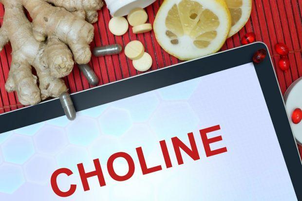 Мало хто знає, але холін - це вітамін В4. Хоча його називають вітаміном, до них він не відноситься. Швидше, це вітаміноподібні речовини. Як виробляєть