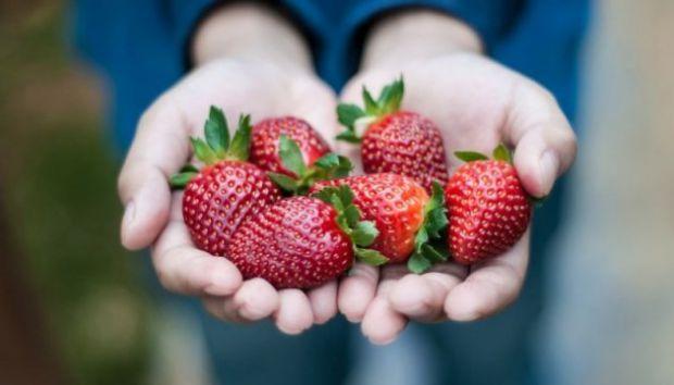 Почався сезон фруктів, але обережно: не кожен малюк може нормально відреагувати на полуницю!