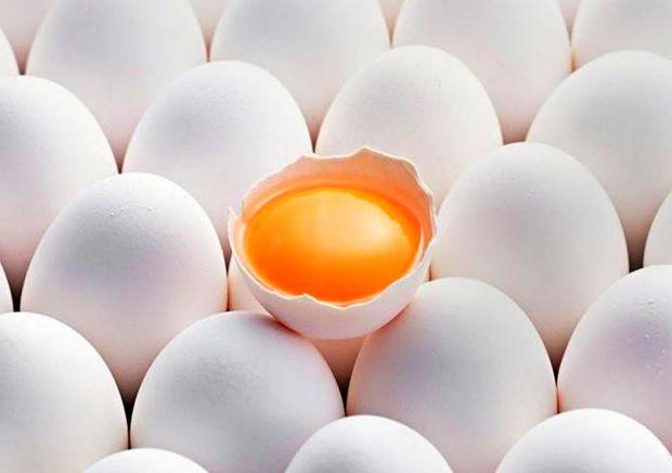 Щодо користі яєць давно ведуться суперечки. Доктор Ніва Шапіра з Тель-Авівського університету охорони здоров'я вважає, що всі яйця не можуть бути одна