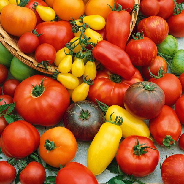 Щоденне споживання помідорів сприяє продовженню життя.
