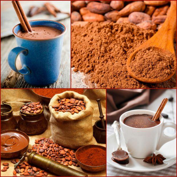 6625_cacao.jpg (91.13 Kb)