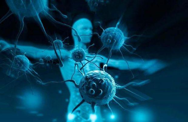 Імунітет не тільки винищує інфекцію і хворі клітини, він займається утилізацією молекулярно-клітинних відходів. Якщо якісь відмирають клітини, туди пр