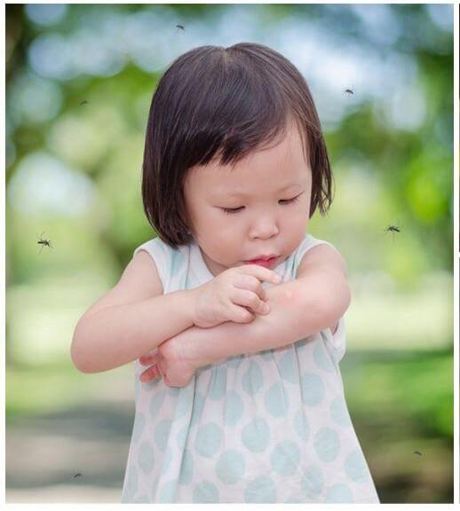 Наприклад, коли дитину чи дорослого вкусив комар, з'являється свербіж, чому так трапляється - читайте далі.