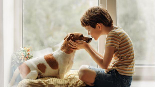 Діти часто просять батьків завести домашнього вихованця. Але іноді трапляється, що малюки відчувають сильний страх перед тваринами. І це цілком нормал