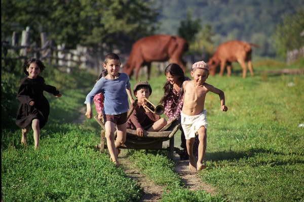 Наукові співробітники розповіли, що діти, які провели своє дитинство в селі, менш сприйнятливі до захворювань та алергії.