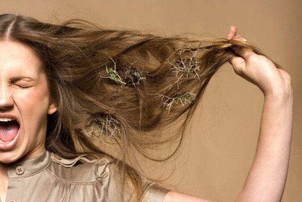 Є багато причин, що викликають випадання волосся. Чомусь здається, що це у інших авітаміноз, анемія і стрес, а вам просто новий шампунь не підійшов. З