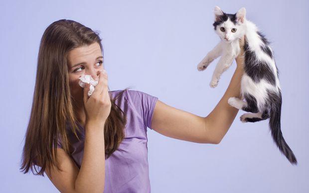 Еще двадцать лет назад аллергия была редким заболеванием, о котором большинство людей вообще не знали. Зато медики из уверенностью говорили, что совсе