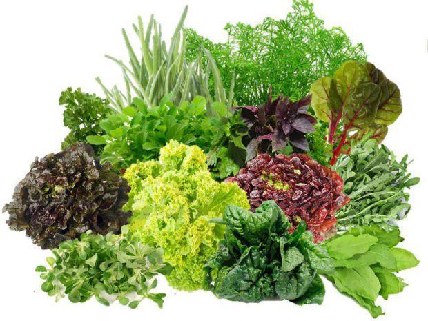 Зелень принесе вашому організму сил і потрібних речовин, щоб бути здоровим.