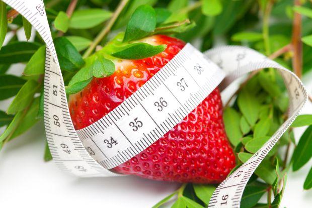 7528_dieta-sajkova.jpg (52.81 Kb)