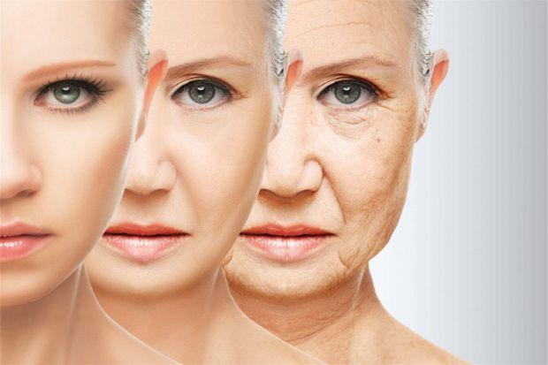 Академіки провели дослідження, де вони з'ясували, які люди старіють повільніше.