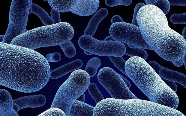 Медики стверджують, що від вірусу грипу в першу чергу страждають епітеліальні клітини верхніх і нижніх дихальних шляхів.