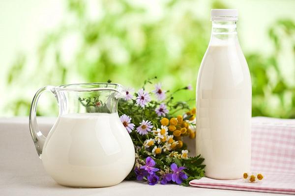 Болі в шлункуОскільки цей вид молока вважається досить жирним, його активно використовують при захворюваннях шлунково-кишкового тракту. Потрапляючи в