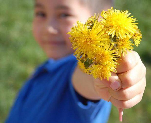 Допомогти в усуненні дискомфорту під час запору можуть і рослини, що покращують процес травлення.