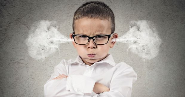 Нідерландські психологи з'ясували, що впливає на швидкий розвиток мозку в дитинстві.