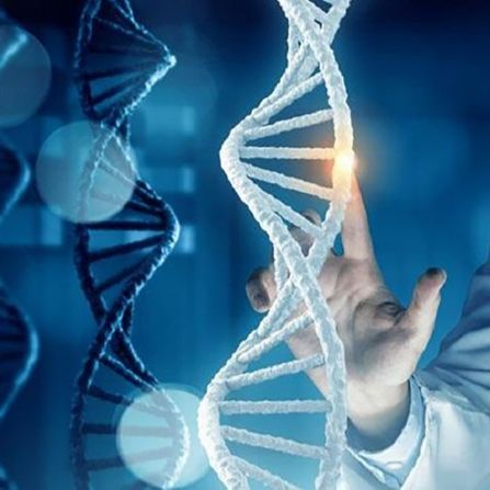 Вперше фахівцям Університету Пенсільванії вдалося виправити небезпечну мутацію ДНК мишеняти, коли та ще перебувала на стадії внутрішньоутробного розви