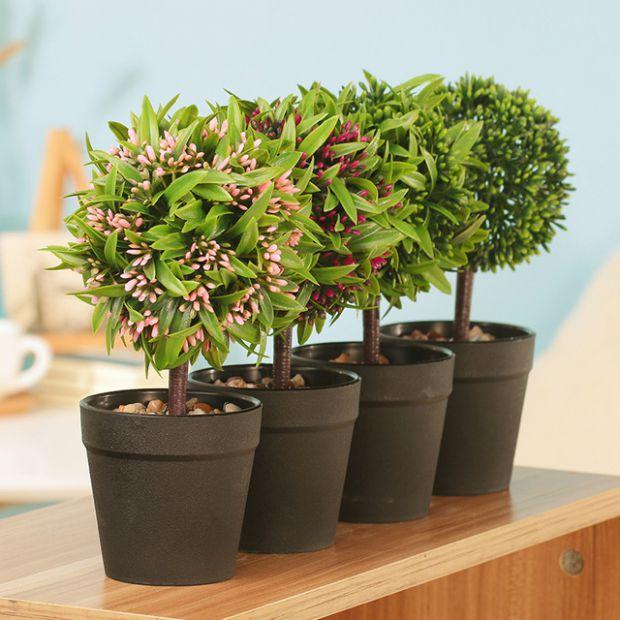 Если вы решили выращивать растения в вазонах, то нужно знать, как все правильно и точно сделать. В материале все подробно описано, также можете зайти