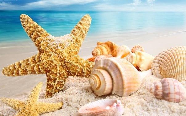Море... море... Співалося в одному з улюблених мультфільмів. Доросле життя не таке безхмарне. Тому на відпустку іноді ми відкладаємо мінімум часу. А д