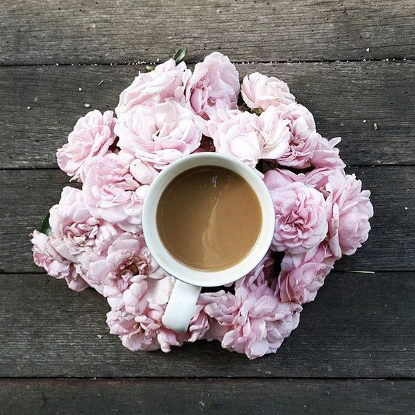 До складу свіжозапареного чаю входить безліч різних корисних складових: мінеральні та дубильні речовини, ефірні масла, кофеїн , амінокислоти, багато в