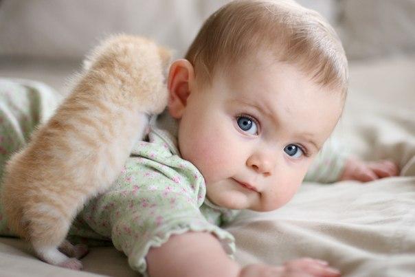 Як допомогти дитинці заснути? Пустіть до неї кота)Господарі цього кота - доволі ризикові люди, однак, їх ризик приносить винагороду - дитинка солодко