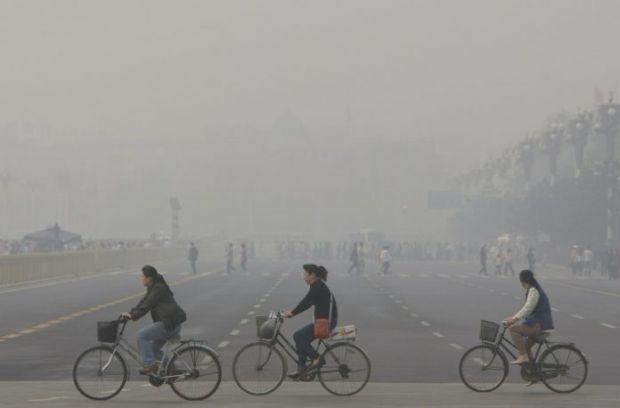 З кожним роком екологія в світі піддається жахливим змінам.