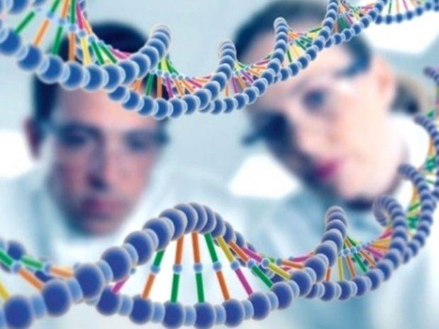 Новий ДНК-тест може визначити 193 спадкові хвороби, включаючи анемію, епілепсію і метаболічні розлади у новонароджених. Великим плюсом є те, що його м