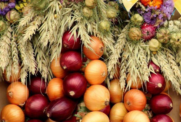 Співробітники Першого госпіталю при Китайському медичному університеті в Шеньяні встановили: активне споживання цибулевих овочів може знизити ризик ко