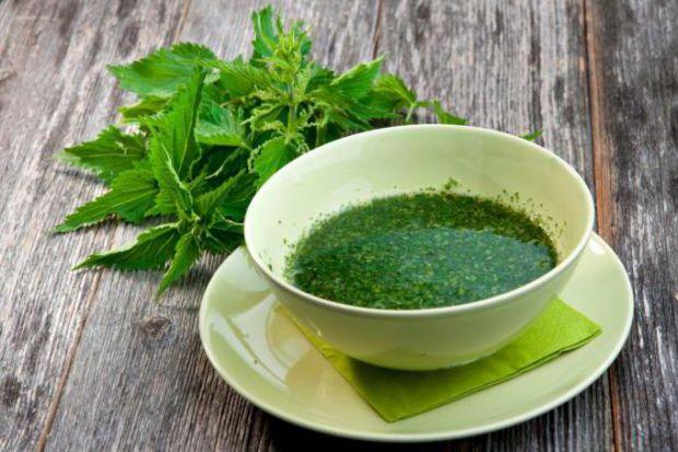 В даний час, кропива користується популярністю не тільки як головний інгредієнт в приготуванні рецептів народної медицини, але і в традиційній. Ця лік