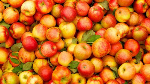 Яблука любить, практично, кожна людина. Вони надають організму велику кількість вітамінів і багато інших корисних речовин.