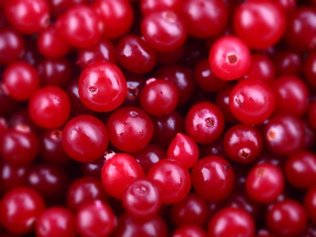 Журавлина - ягода знайома кожному з нас. З давніх часів журавлину використовували в якості основного лікарського засобу при різноманітних захворювання