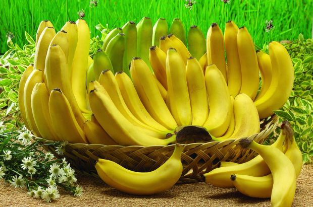 Якщо часто їсти фрукти - людина стане щасливішою.Такої думки дійшли фахівці, вивчаючи вплив фруктів та овочів на емоційну сторону людського організму.