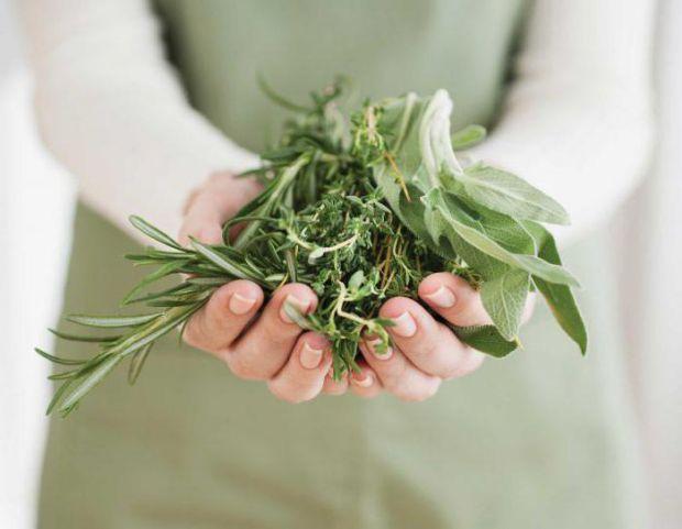 Трави, що порушують нормальний перебіг вагітності.