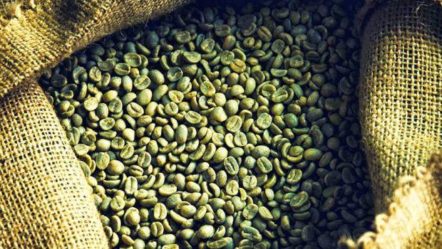 Зелена кава - це напій з кавових зерен, які не піддавалися обсмажуванню. Він не схожий на звичайну чорну каву за властивостями і смаковими якостями, т