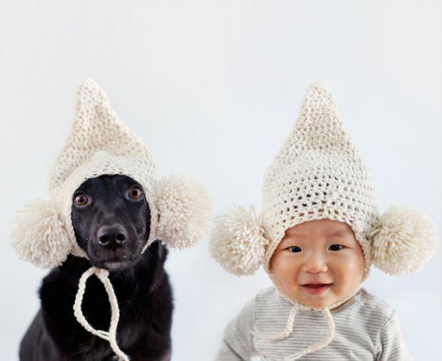 Це найкращі друзі Зоуі і Джаспер. Зоуі - семирічна собака-рятувальник, чиє життя було наповнене драматичних подій. Вона народилася на Тайвані, під две