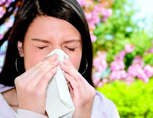 Поліноз -  сезонне захворювання, причиною якого є алергічна реакція на пилок рослин. Іноді його називають сінною лихоманокю, хоча сіно не є значним чи