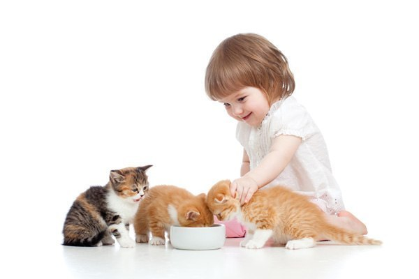 Приходячи у цей світ, дитина починає його вивчати: спочатку на дотик, потім на смак, ну а згодом - все ламаючи і перевертаючи. Межа терпіння - пальці