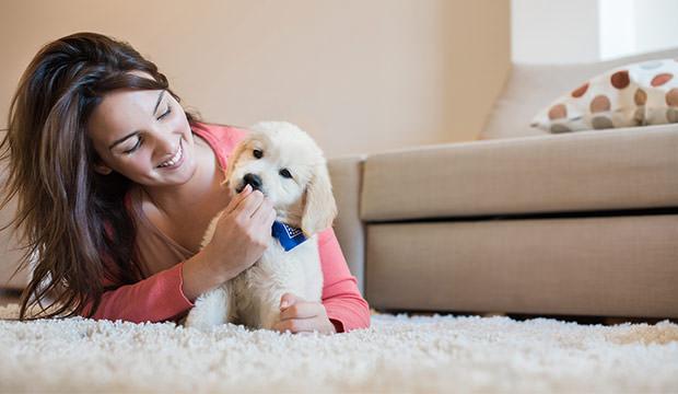 bigstock-woman-with-puppy-922553.jpg (35.47 Kb)