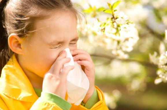 im8x383-alergiya.jpg (28.31 Kb)