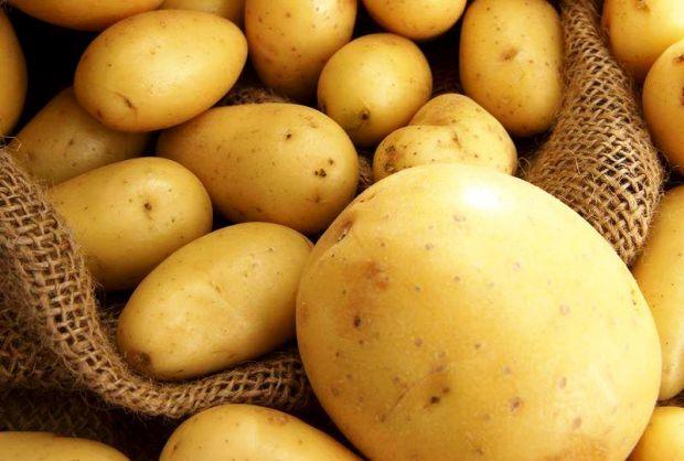 Як виявилося, картопля - дуже корисна: вона містить багато крохмалю, який перетворюється на глюкозу, і вітамін С, що такий необхідний в осінньо-зимови
