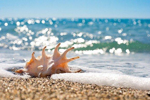 Вчені довели, що морську воду слід розглядати, як найнебезпечнішу в світі отруту.  При попаданні великої кількості даної рідини в організм можливі важ